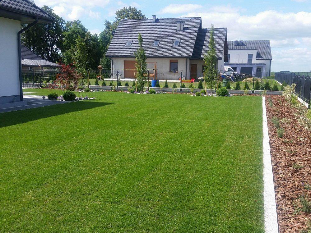 Zakładanie trawników z rolki.