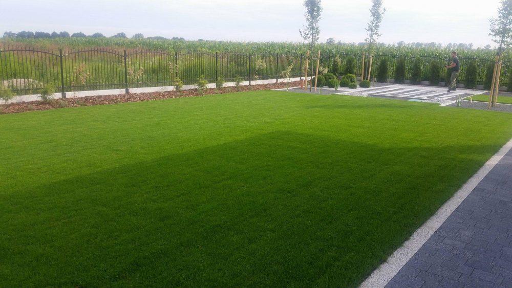 System nawadniania i trawnik z rolki