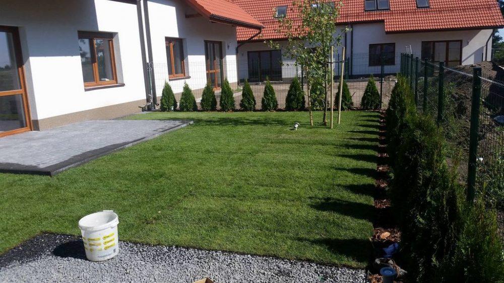 Trawnik z nawadnianiem