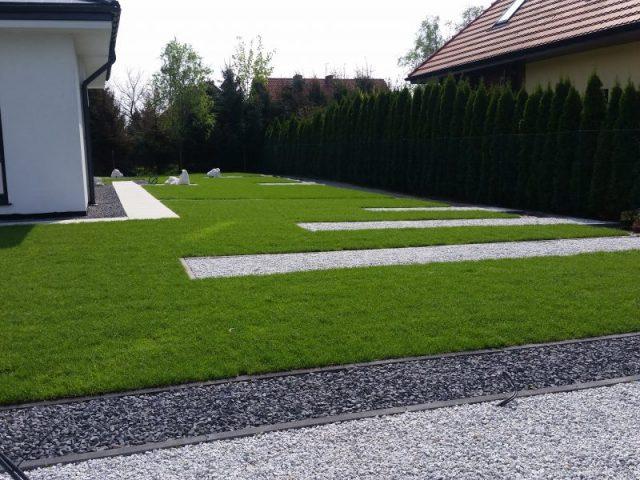 Ogród we Wrocławiu z trawnikiem