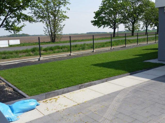 Trawa z rolki w ogrodzie