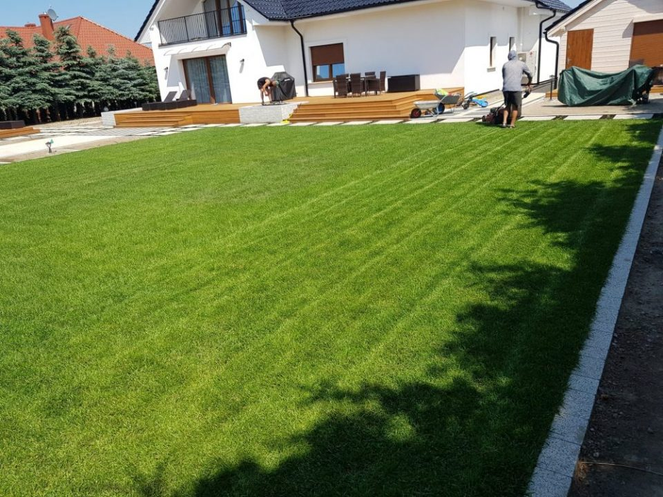 Trawnik z rolki z systemem nawadniania